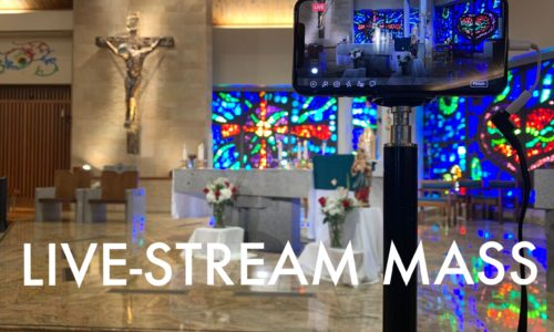 click here to view past live-stream Masses